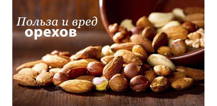 Горіхи - користь і шкода. Корисні властивості горіхів.