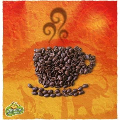 Эфиопия Джимма арабика кофе в зернах