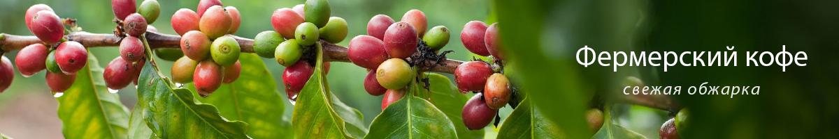 Фермерский кофе в зернах