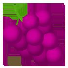 Іконка винограду