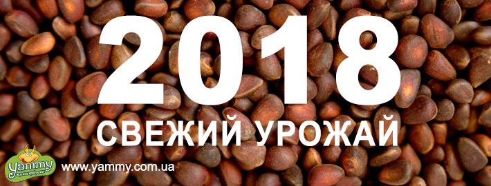 Кедровые орехи в скорлупе 2018 года