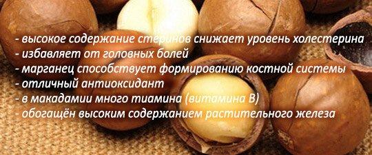 Макадамский орех польза
